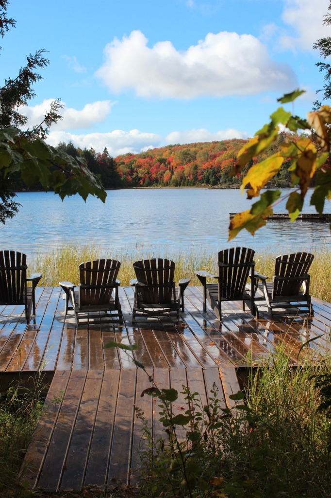 fall colour chairs deck 3